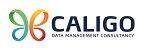 Caligo Data Management Consultancy